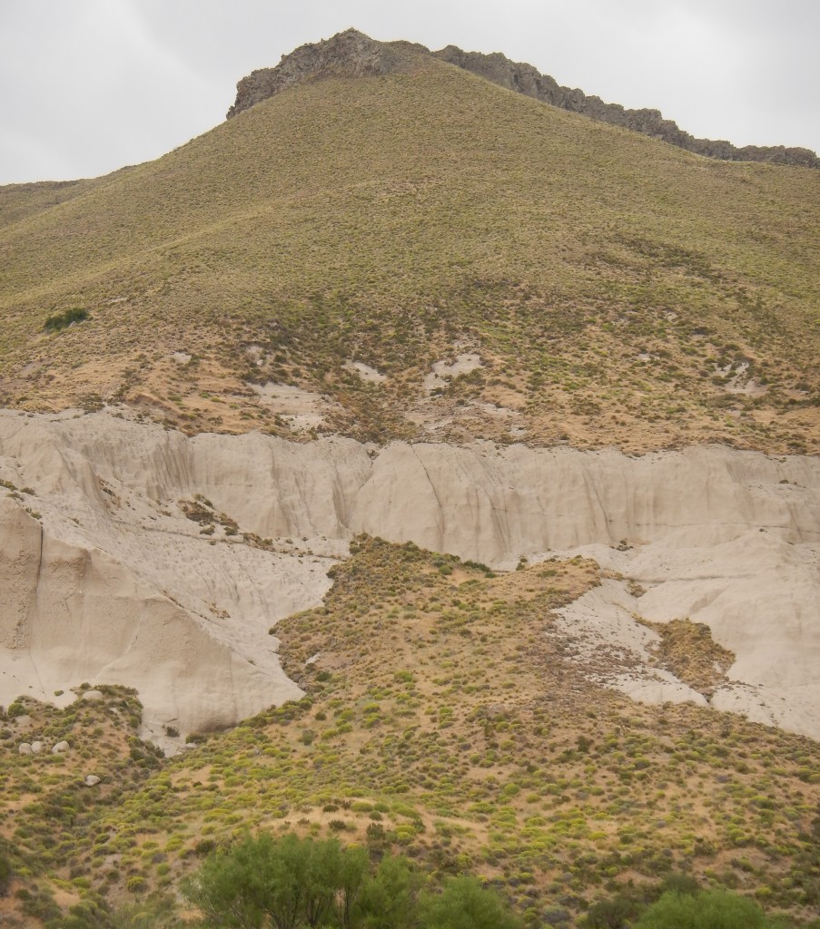 The basalt cliffs at the top of these hills and bluffs are the perfect nesting ground for condors.