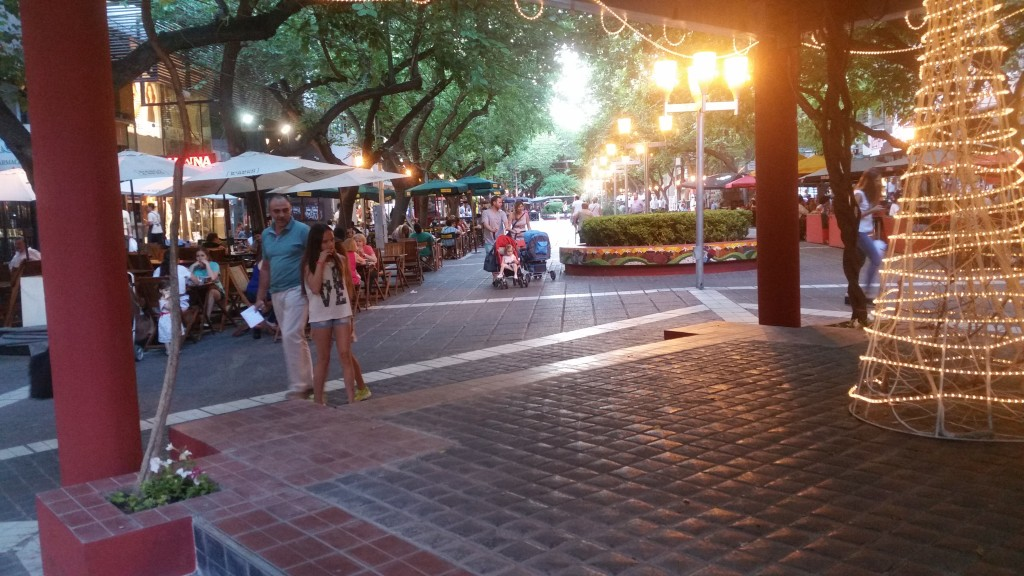 Mendoza is very pedestrian friendly. Sarmiento street is full of open-air cafes.